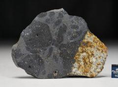 MC176 (32.21 gram)