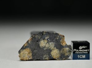 NWA 13166 (3.08 gram)