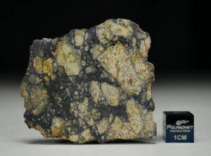 NWA 13166 (10.07 gram)