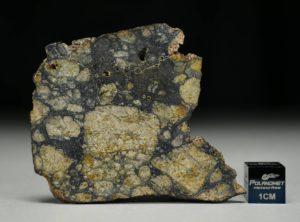 NWA 13166 (12.25 gram)