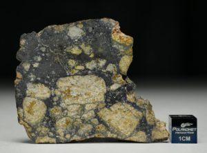 NWA 13166 (13.34 gram)