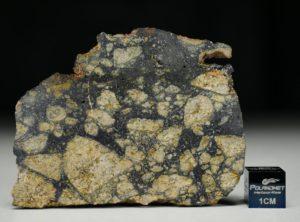 NWA 13166 (15.33 gram)