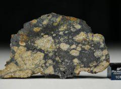 NWA 13166 (14.08 gram)