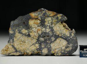 NWA 13166 (13.73 gram)
