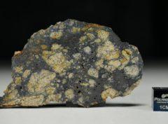 NWA 13166 (12.28 gram)