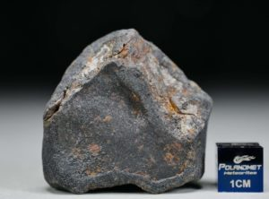 GAO-GUENIE Oriented (45.5 gram)