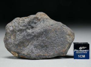 GAO-GUENIE Oriented (45.6 gram)