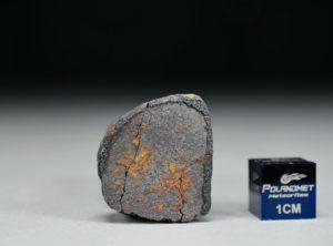 GAO-GUENIE Oriented (11.6 gram)
