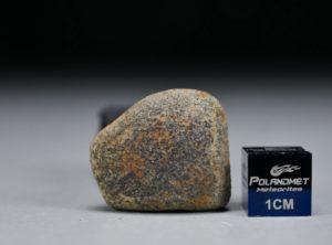 GAO-GUENIE Oriented (12.1 gram)