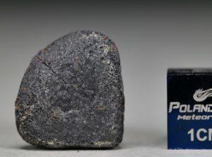 GAO-GUENIE Oriented (3.4 gram)