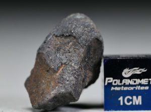 GAO-GUENIE Oriented Bullet (5.77 gram)