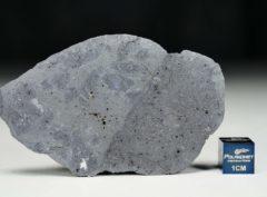 MC176 (20.86 gram)