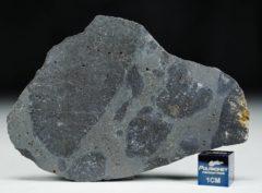 Meteorite NWA 13236 (26.45 gram)