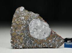 MC 172 (22.16 gram)