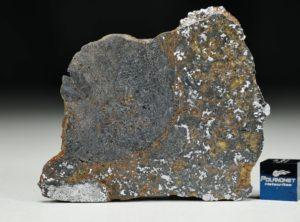 NWA 13337 (24.52 gram)