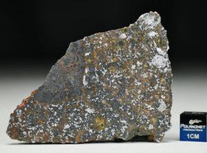NWA 13337 (21.53 gram)