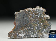 MC 172 (19.15 gram)