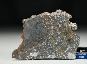 NWA 13337 (19.15 gram)