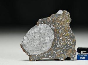 NWA 13337 (21.91 gram)