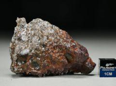 MC 172 (43.21 gram)