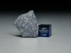 NWA 13266 (1.11 gram)