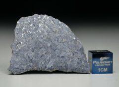 NWA 13266 (4.59 gram)