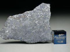 NWA 13266 (4.53 gram)