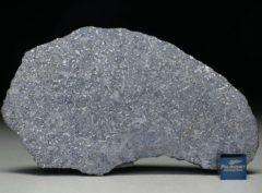 NWA 13266 (27.07 gram)