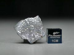 NWA 13266 (0.71 gram)