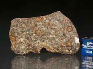 NWA 7169 (8.12 gram)