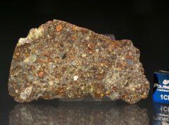 NWA 7169 (8.19 gram)