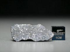 NWA 13266 (1.01 gram)