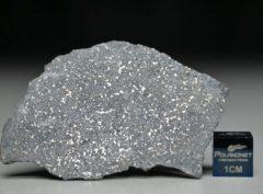 NWA 13266 (4.26 gram)