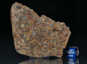 NWA 7172 (16.77 gram)