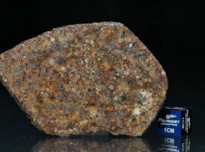 NWA 7172 (20.35 gram)