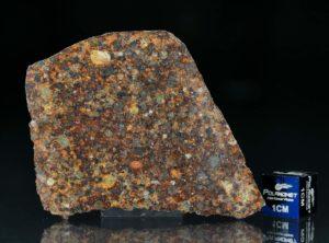 NWA 7172 (14.06 gram)