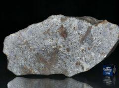 NWA 7168 (423 gram)