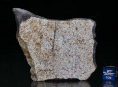 Zemaitkiemis (20.15 gram)