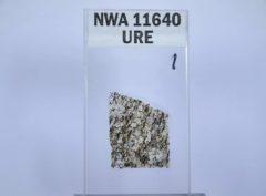 NWA 11640 UREILIT #1