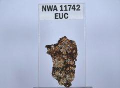 NWA 11742 Eucrite melt breccia