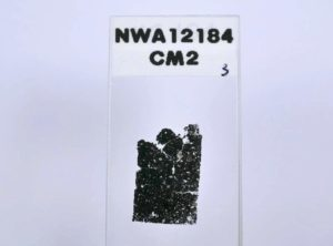 NWA 12184 CM2
