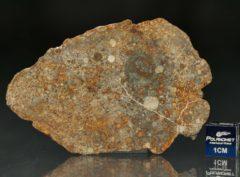 NWA 7171 (18.42 gram)