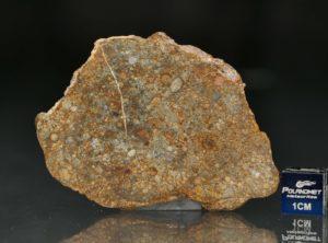 NWA 7171 (16.16 gram)