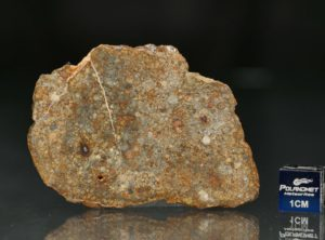 NWA 7171 (15.45 gram)
