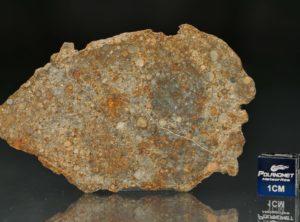 NWA 7171 (16.74 gram)