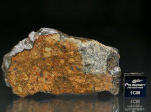 NWA 11388 (10.96 gram)