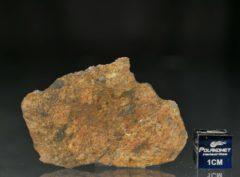 NWA 11388 (8.53 gram)