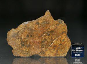 NWA 11388 (10.97 gram)