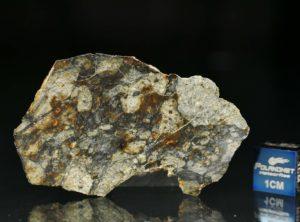NWA 5495 (19.45 gram)