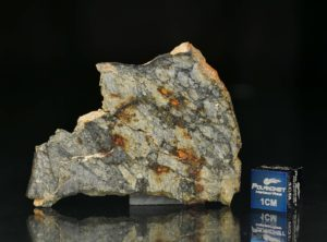 NWA 5495 (10.15 gram)